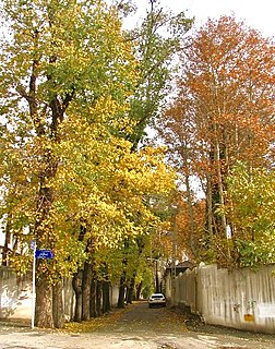 Neighborhood of Tehran in Shemiranat County, Tehran province, Iran