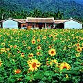 Kaohsiung County scenic photo 16.jpg
