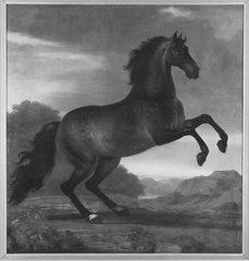 Karl XI:s livhäst Favorit Hispanicus