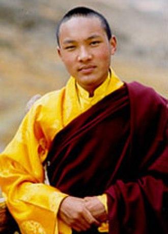 Ogyen Trinley Dorje - Ogyen Trinley Dorje at age 14