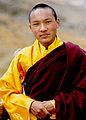 Karmapa Urgyen Trinley Dorje1.jpg