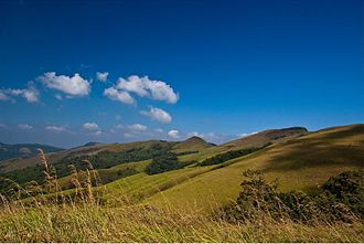 Kemmangundi - Beautiful landscapes around Kemmangundi