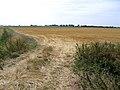 Kesteven extension, Hundred Fen, Pointon, Lincs - geograph.org.uk - 215192.jpg