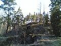 Kivikko - panoramio (1).jpg