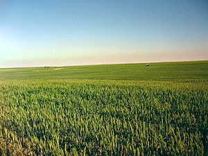 Yakima County, Washington - South eastern Yakima County vast farmlands.