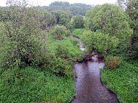 Koloch river at the bridge near the village of Borodino; eastward; from the bridge; 2012-06-10.JPG
