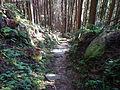 Kumano Kodo Dainichigoe World heritage35.JPG