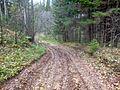Kungursky District, Perm Krai, Russia - panoramio (114).jpg