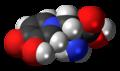 L-Mimosine molecule spacefill.png