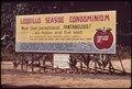LUGUILLO BEACH - NARA - 546425.tif