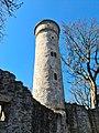 Labyrinthturm Theresienstein hinten 20200406 01.jpg