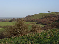 Ladle-Hill-geograph-306526-by-Andrew-Smith.jpg
