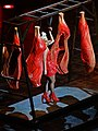 Lady Gaga Americano meat dress.jpg
