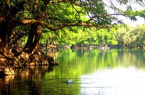 Climate of Mexico - Image: Lago de Camecuaro