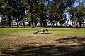 Lago de Regatas (7803055718).jpg