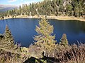 Lago di colbricon - panoramio.jpg