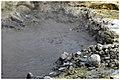 Lagoa das Furnas - panoramio (6).jpg