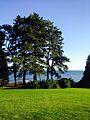 Lake View at Gairloch Gardens.jpg