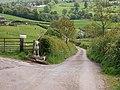 Lane by entrance to Lodge Farm - geograph.org.uk - 810328.jpg