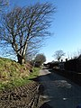 Lane through Tremail - geograph.org.uk - 731289.jpg