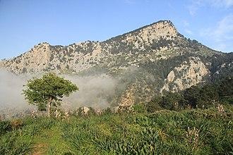 Lapithos - Landscape near Lapithos