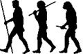 Late Human evolution scheme.png