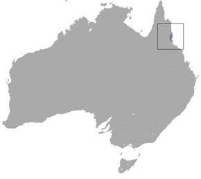 Description de l'image Lemur-like Ringtail Possum area.png.