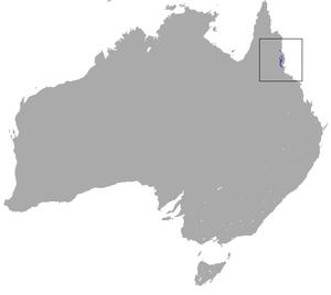 Lemur-like ringtail possum - Image: Lemur like Ringtail Possum area