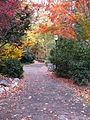 Lithia Park Path.JPG