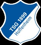 Tsg Hoffenheim Wiki