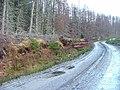 Logs by the Roadside - geograph.org.uk - 342346.jpg