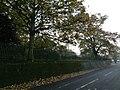 London, Plumstead-Shooters Hill, Plum Lane & Shrewsbury Park 03.jpg