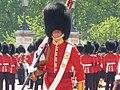London 2010 (4718999826).jpg