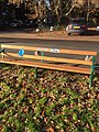 Long shot of the bench (OpenBenches 2973-2).jpg