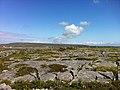 Looking across Inishmore (6007846395).jpg