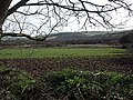 Looking through a hedge into a muddy field with Penhallow Moor in the middle ground - geograph.org.uk - 367284.jpg