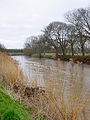 Looking upstream on the River Avon - geograph.org.uk - 145354.jpg
