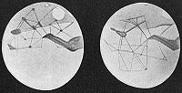 Mars sketched as observed by Lowell sometime before 1914. (South top)