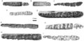 Lower dentitions of basal tapiromorphs.png