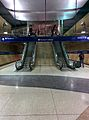 MSP Terminal 1 light rail escalators.jpg