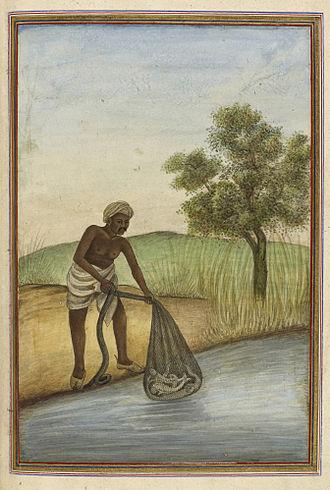 Fishing in India - Macchi, a traditional Muslim caste of fishermen - Tashrih al-aqvam (1825)