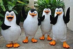 Los Pingüinos De Madagascar Wikipedia La Enciclopedia Libre