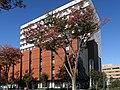 Maebashi National Government Building.jpg