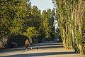 Magnuson Park (21060438203).jpg