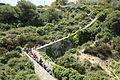 Malta - Rabat-Mgarr - Triq San Pawl tal-Qliegha - Bingemma Valley + Victoria Lines 07 ies.jpg