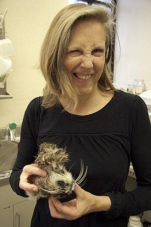 Mary Roach - Roach, holding a cat head