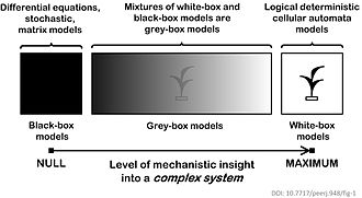 Agent-based model - Mathematical models for complex systems