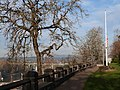 McLoughlin Promenade and flag - Oregon City Oregon.jpg