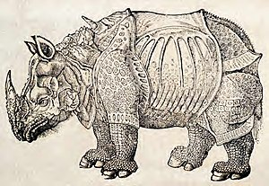 Megafauna - Rhinoceros, from Dürer's woodcut