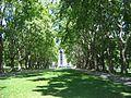 Melb CBN Carlton Gardens 3.jpg